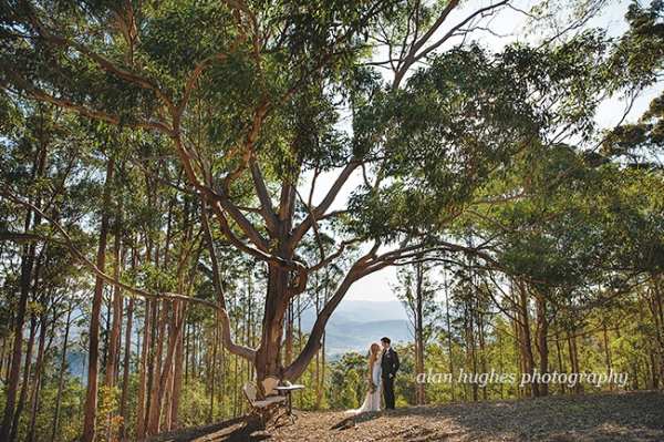 b2ap3_thumbnail_Sunshine_Coast_Mapleton_wedding_photographers_075.jpg