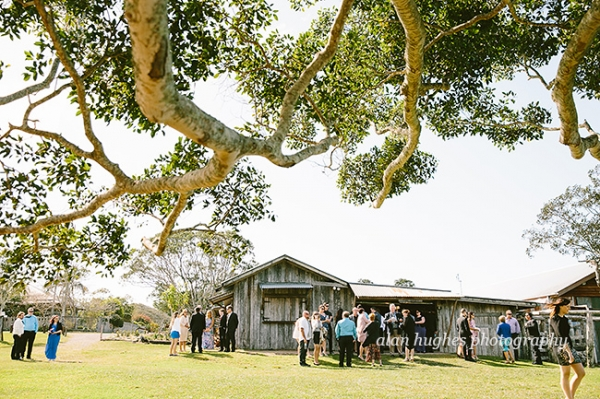 b2ap3_thumbnail_Yandina_Station_wedding_photographer_035.jpg