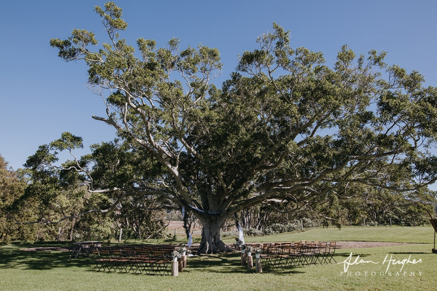 b2ap3_thumbnail_Yandina_Station_Wedding_photographers_022.jpg