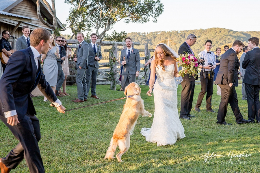 b2ap3_thumbnail_Yandina_Station_wedding_photoghy_062.jpg